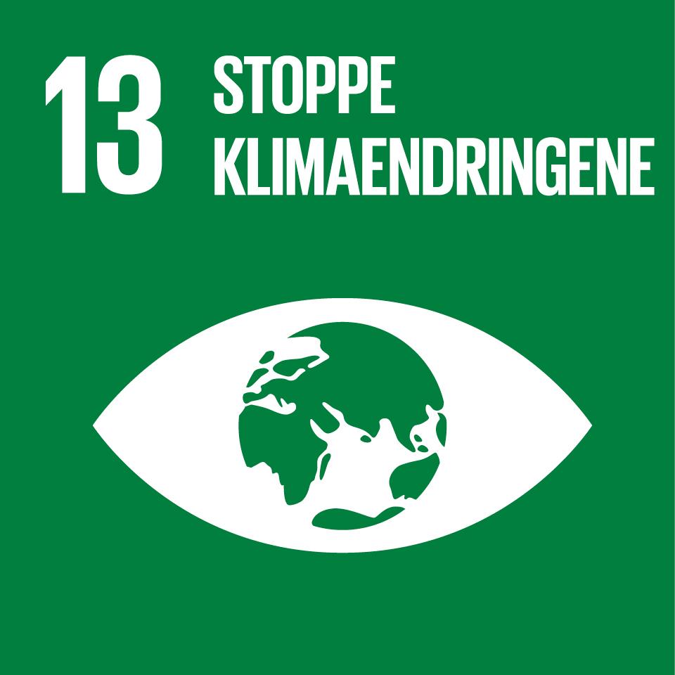 FNs bærekraftsmål 13 - Wittusen & Jensen